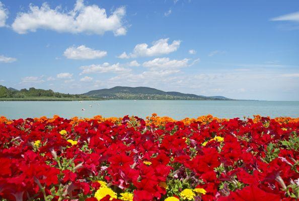Vengrija su poilsiu prie Balatono ežero