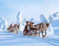 Image result for rovaniemi arktikum museum