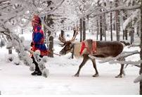 http://www.mightyfinecompany.com/holiday/fny567/6finland-husky-safari.jpg